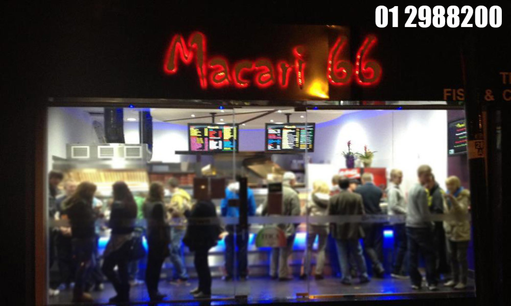 macari66